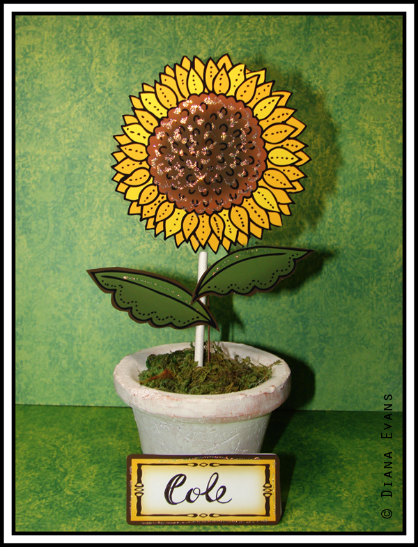 sunflower place tags